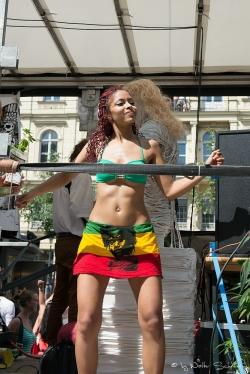 Regenbogenparade 2013 (13 von 61).jpg